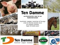 Afbeelding: Ten Damme collage